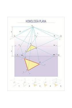 Carteles Didácticos - La Homología Plana