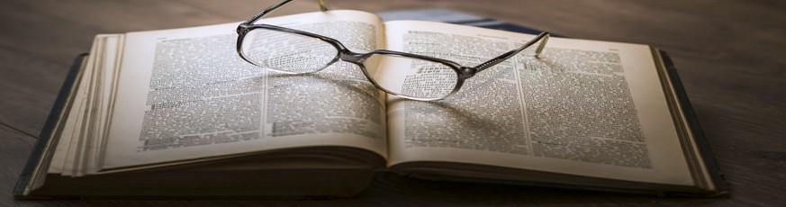 Literatura y Ensayo